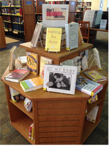 2012 Wellesley Library NIAW Display